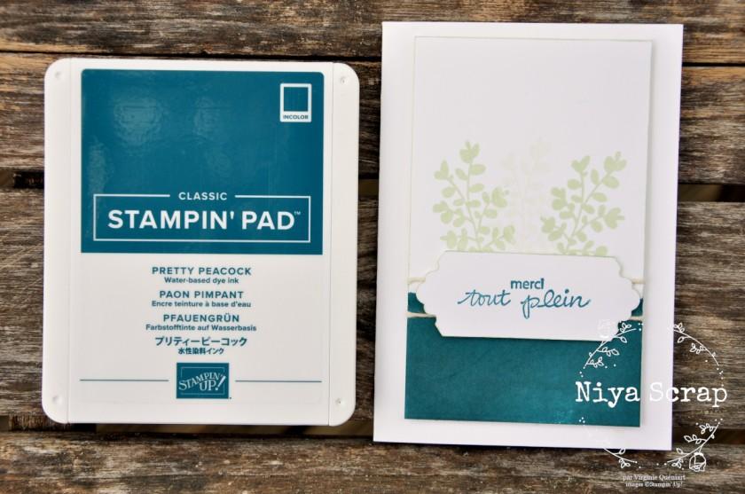 Carte simple mais pimpante - matériel Stampin' Up!