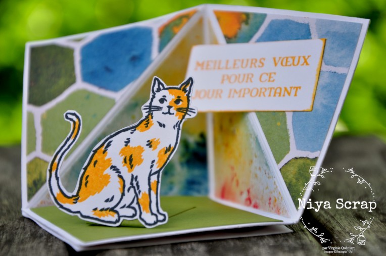 Carte Pop Up Miaou ! - Matériel Stampin' Up!