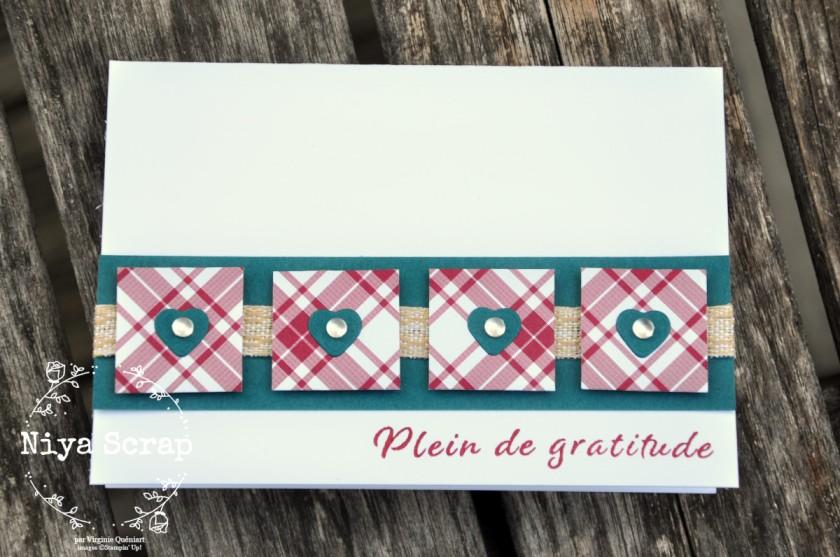 Niya Scrap - Carte One Sheet Wonder Cards - Joyeux Carreaux - matériel Stampin' Up! - Carte Paon Pimpant
