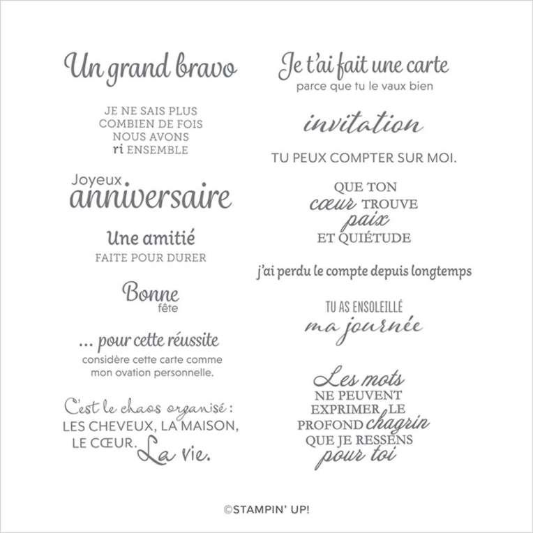 SET DE TAMPONS AMOVIBLES VOICI UNE CARTE (FRANÇAIS)