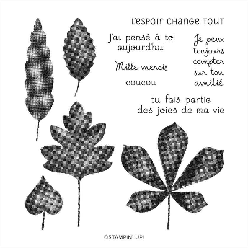 SET DE TAMPONS EN RÉSINE BOUQUETS DE FEUILLES (FRANÇAIS)