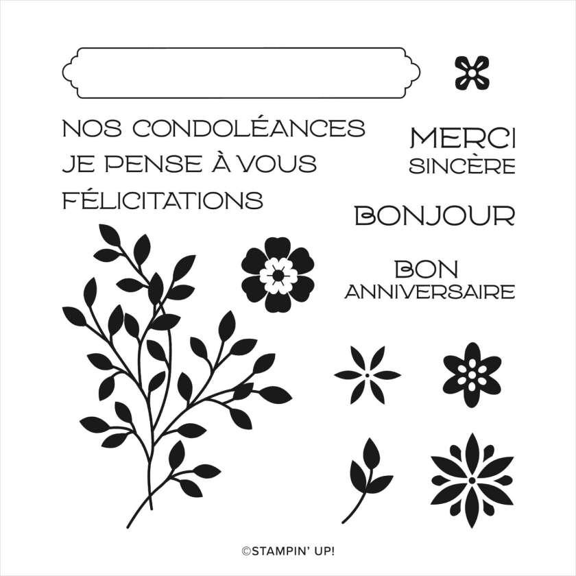 SET DE TAMPONS AMOVIBLES SOUHAITS SOUS LA VIGNE (FRANÇAIS)