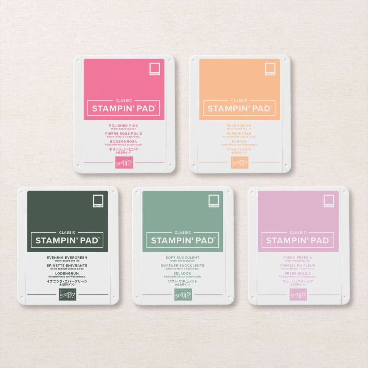 ASSORTIMENT DE TAMPONS ENCREURS CLASSIC IN COLOR 2021-2023