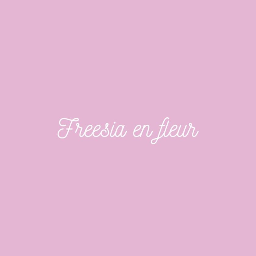 Freesia en Fleur